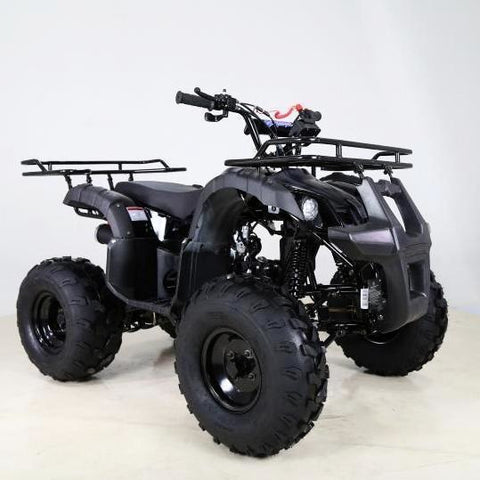 "Force 125cc Quad Bike 8"" Fat Boi Tyres - Black - EpicStuff"