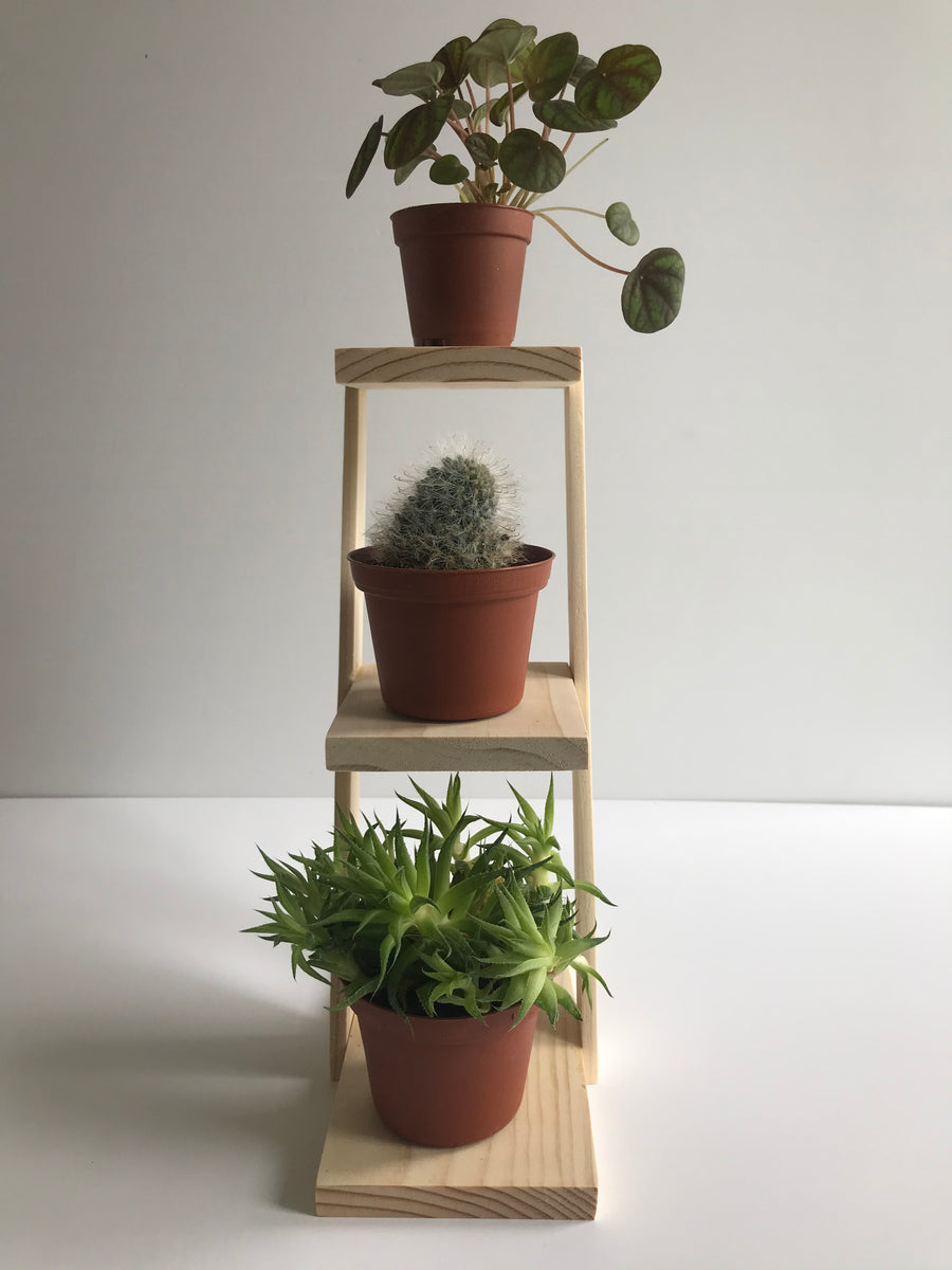 Handmade Three Plant Stand