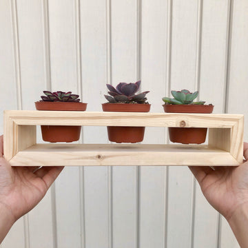 "Cute & Handmade Plant Holder - Holds 3"" pots"