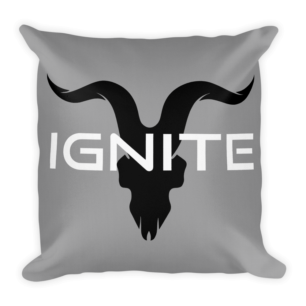 Grey Pillow With Black Logo