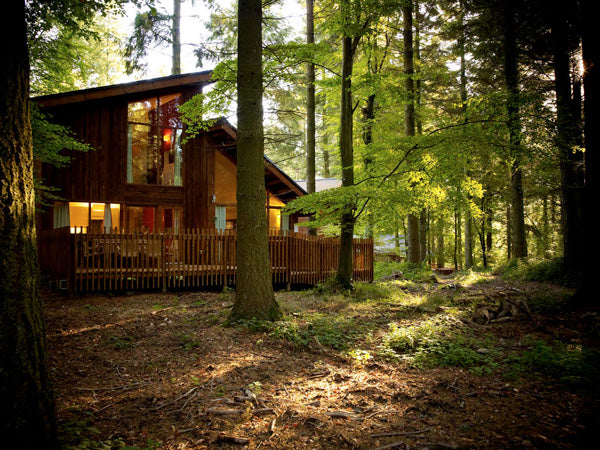 eco friendly holidays forest of dean