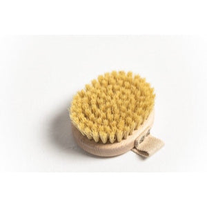 Body Brush - Short