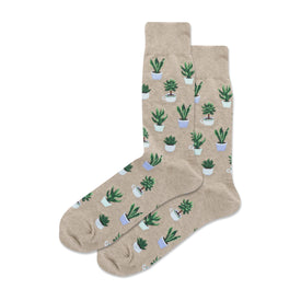 Potted Succulents Funny Spring Mens Novelty Crew Socks