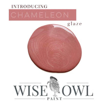 Load image into Gallery viewer, Wise Owl Glaze