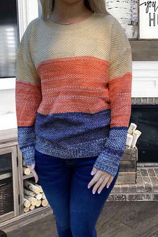 Color Block Netted Sweater