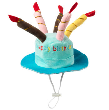 Birthday Hat Blue