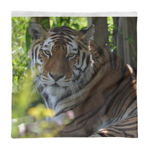 Tiger Ekaterina Square Pillow Case only