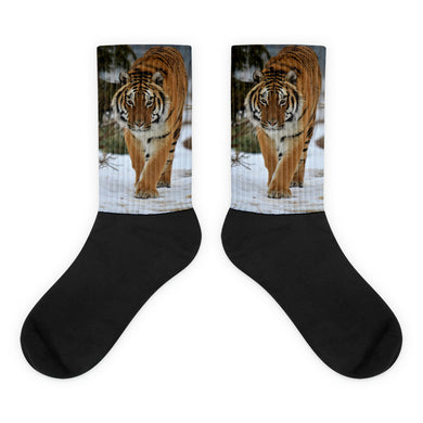 Tiger Dimitri Socks