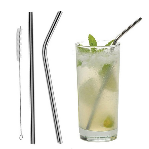 Ecotech Stainless Steel Drinking Straw