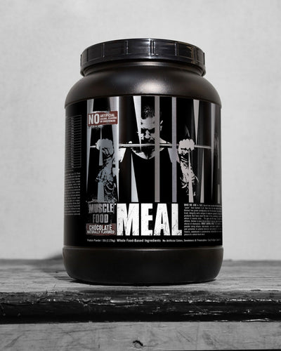 Animal Meal Protien Chocolate