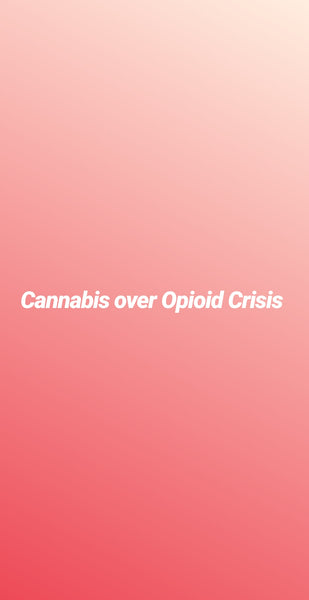 Can Cannabis Help the Opioid Crisis?