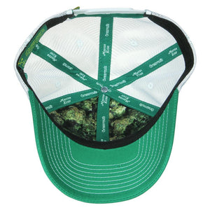 Master Kush Mesh Dad Hat by Grassroots California