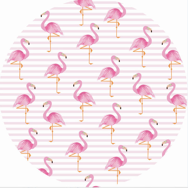 Flamingo Crowd