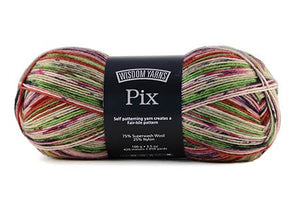 Wisdom Pix Sock Yarn