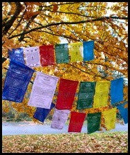 Tibetan Prayer Flags - Medicine Buddha Flags