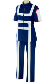 My Hero Academia High School Training Uniform(Male Female) YC20051