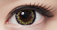 Yellow Gray Grey Contact Lens (TWO PIECE)    YC21238