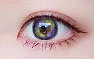 COS Purple(Two piece)Contacts Lens yc20807