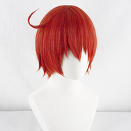 Cosplay working cell wig yc20615