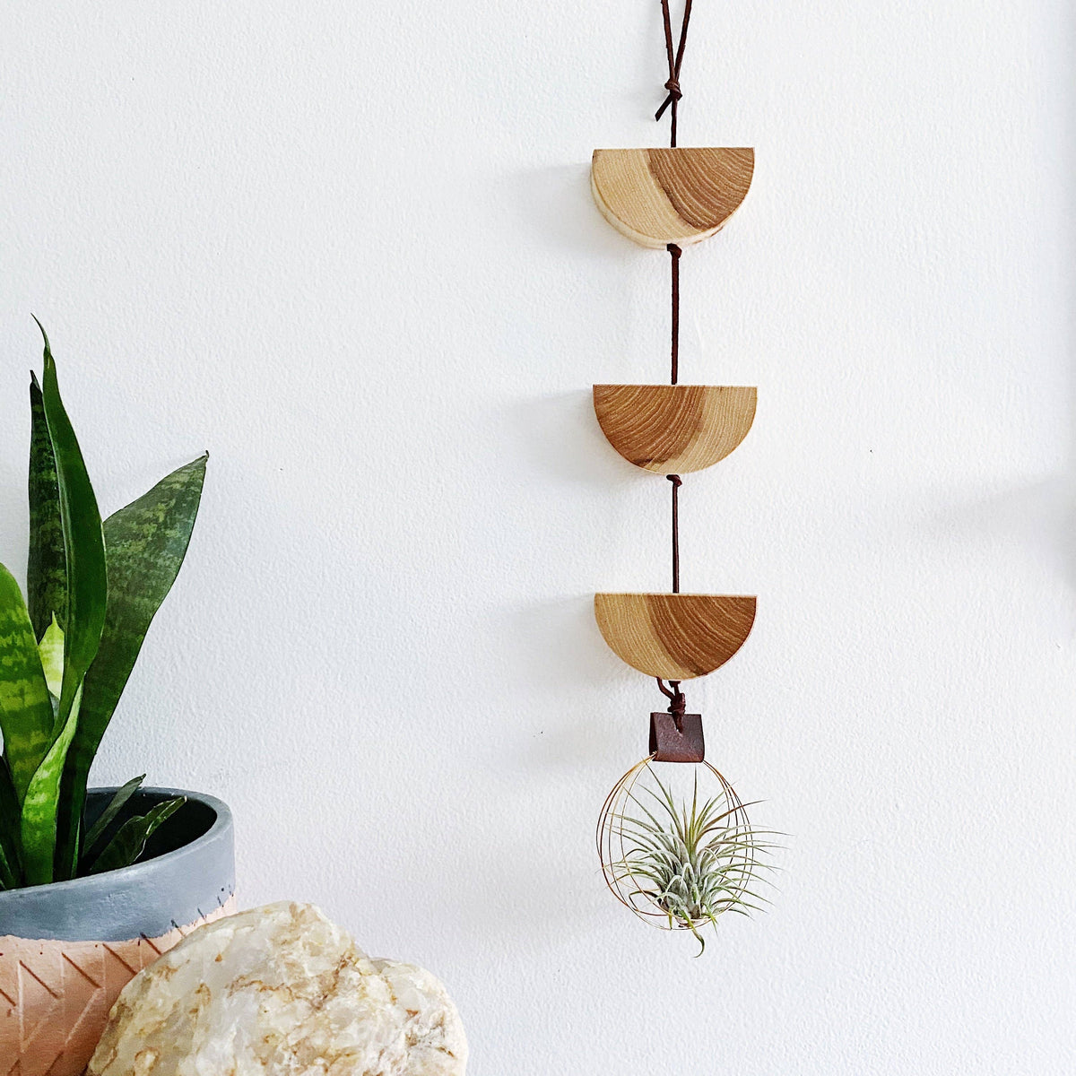 Modern U-Shaped Air Plant Wall Hanging