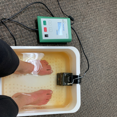 IonCleanse Foot Detox Before