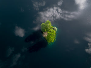 Tiny Tree Covered Island