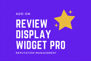 ADD-ON | Review Display Widget PRO - DucaBay