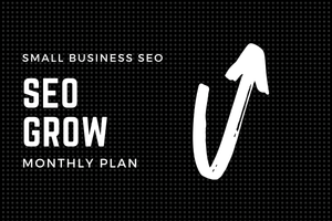 SEO GROW | MONTHLY PLAN - DucaBay
