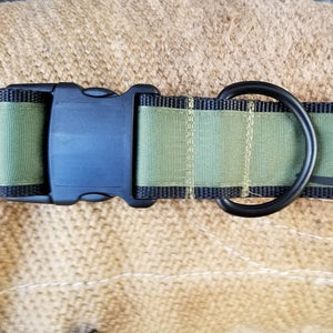 "2"" wide ""INFIDEL"" Dog Collar"