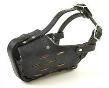 Load image into Gallery viewer, Leather Muzzles