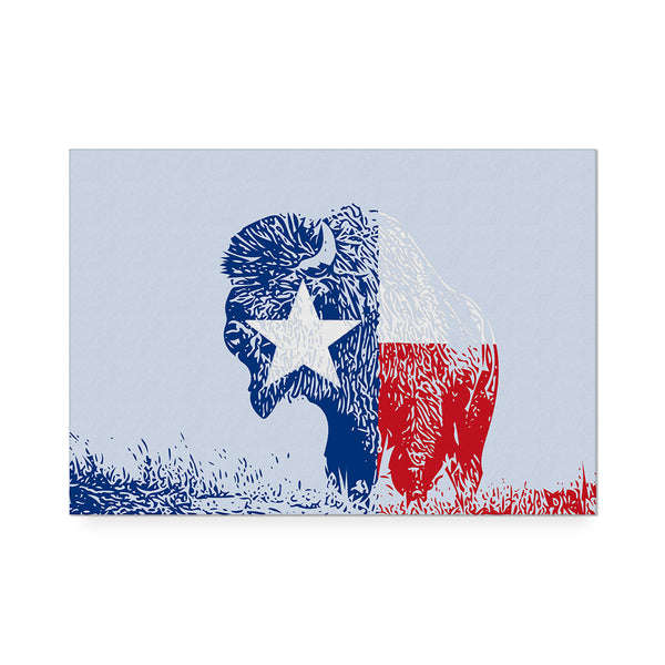 Texas Buffalo Art Print