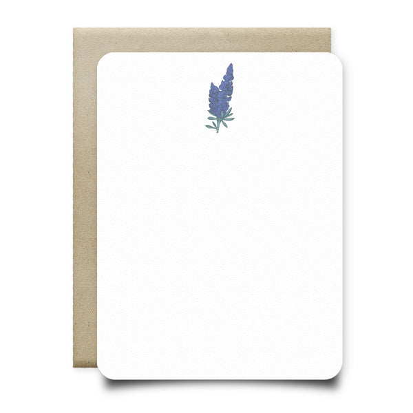 Bluebonnets Stationery Set