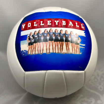 "Coldwater Volleyball - Full Size (8"")"