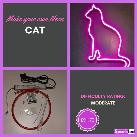 Make your own Neon Cat