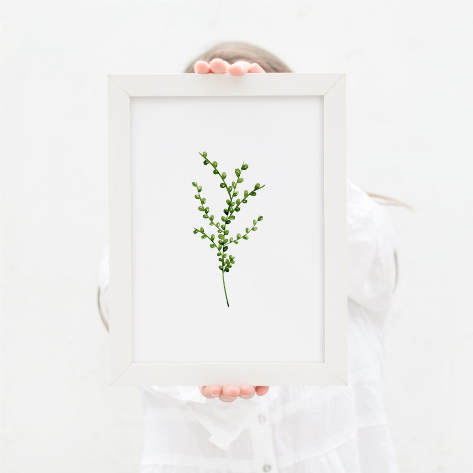 Herb Greenery Single Print - Hillary Proctor Studio