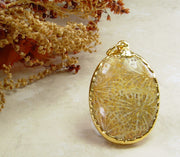 Fossil Coral Pendants