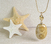 Fossil Coral Jewelry