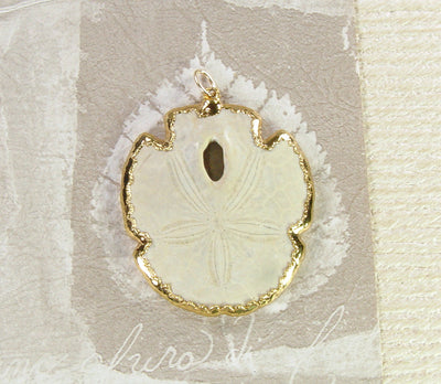 Fossil Sand Dollar Jewelry