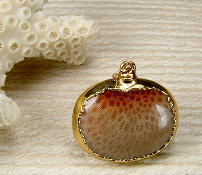 Fossil Coral Pendant