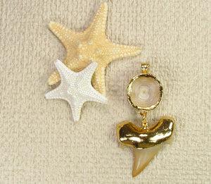 Fossil Shark Tooth and Vertebra Pendant