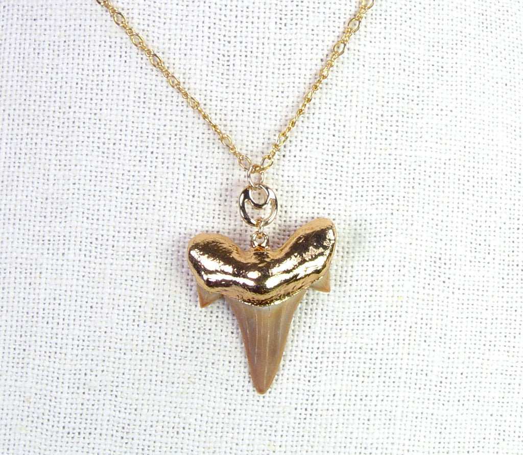 Fossil Mackerel Shark Tooth Necklace