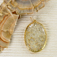 Agatized Fossil Coral Pendant