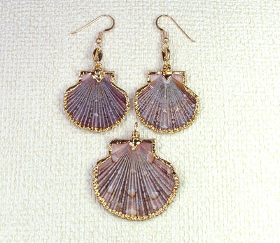 Scallop Seashell Necklace and Earrings Set