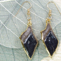 Fossil Gar Fish Scale Earrings