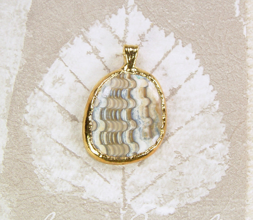 Polished Fossil Clam Pendant