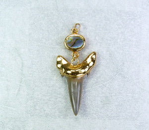 Fossil Shark Tooth Pendant With A Paua Shell Accent Bead