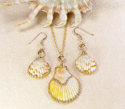 Scallop Shell Earrings And Pendant Set