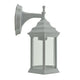 Doveton White Downward Coach Wall Lantern by Amond