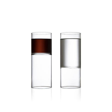 Revolution Wine and Water Glass-Set of 2
