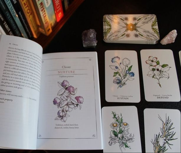 Hedgewitch Botanical oracle cards | Cartomancy | Divination Tool | Tarot Deck | Major Arcana | Guide book | Pagan | Witchy | Magic | Fortune